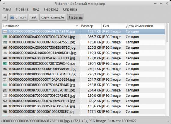 Офисные пакеты: изображения из документа .odt